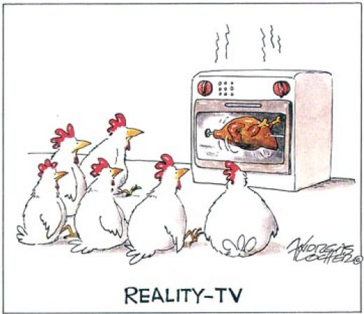 funny-chicken-reality-tv