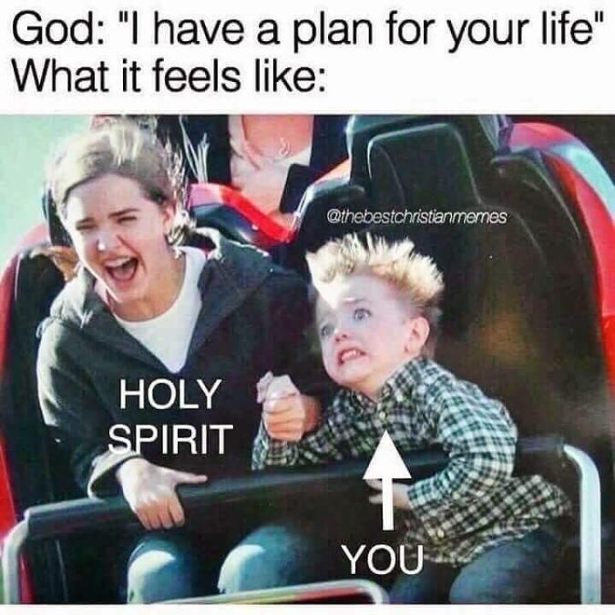humor-roller-coaster